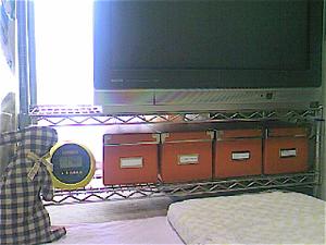 Ts3i0869